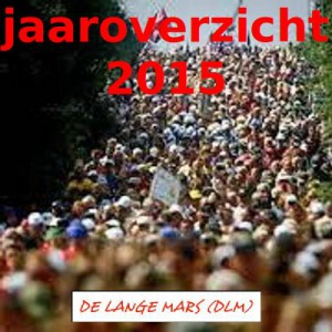 DLM Jaaroverzicht 2015
